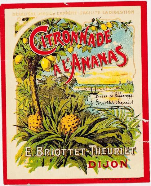 etiquette citronnade ananas briottet