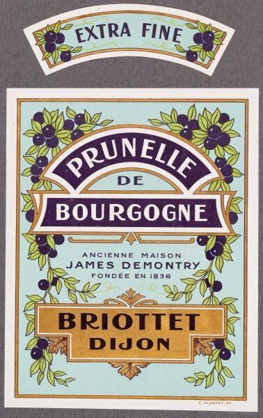 etiquette prunelle de bourgogne briottet 2