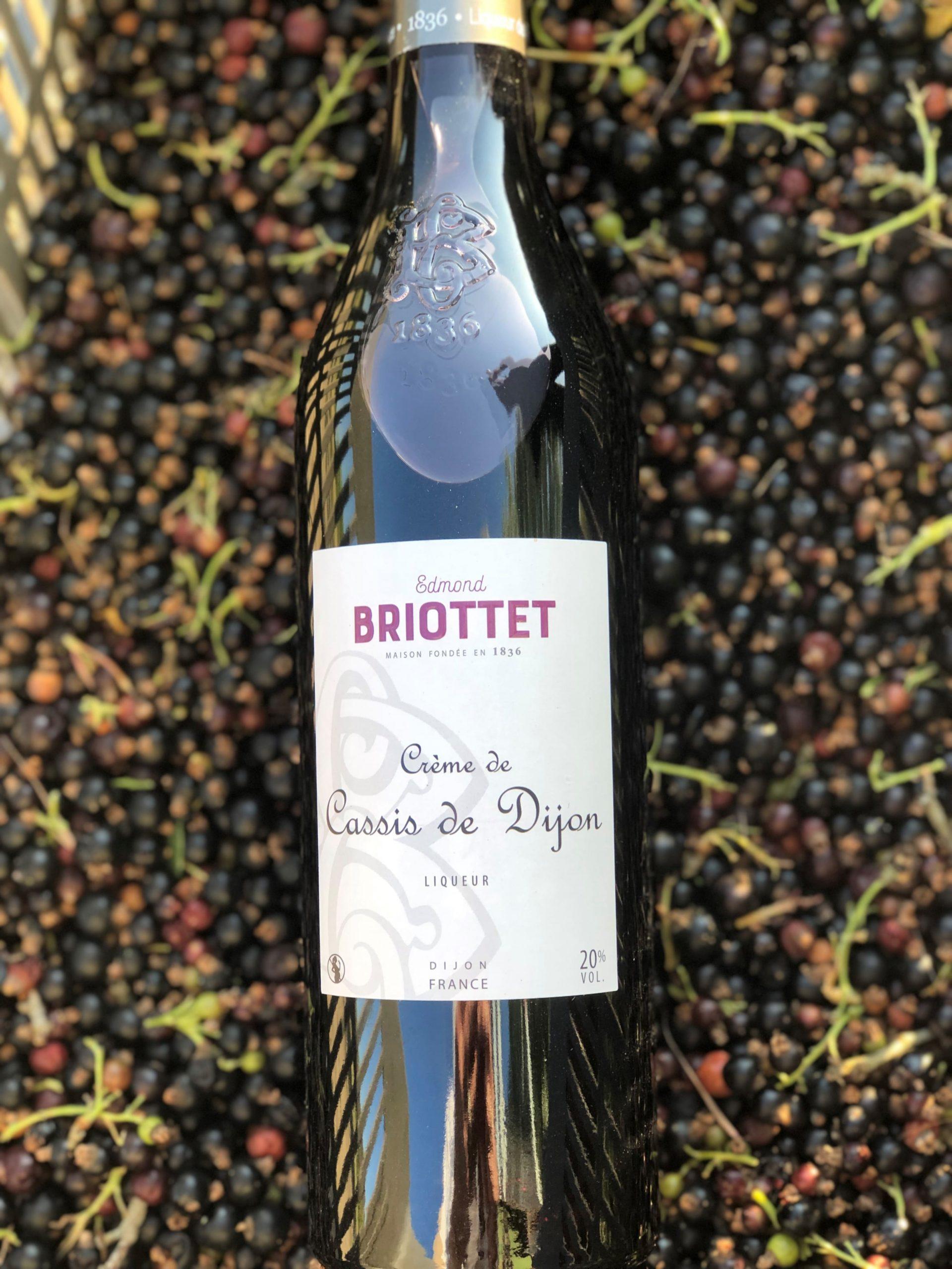 Récolte de cassis pour la Crème de Cassis de Dijon Briottet