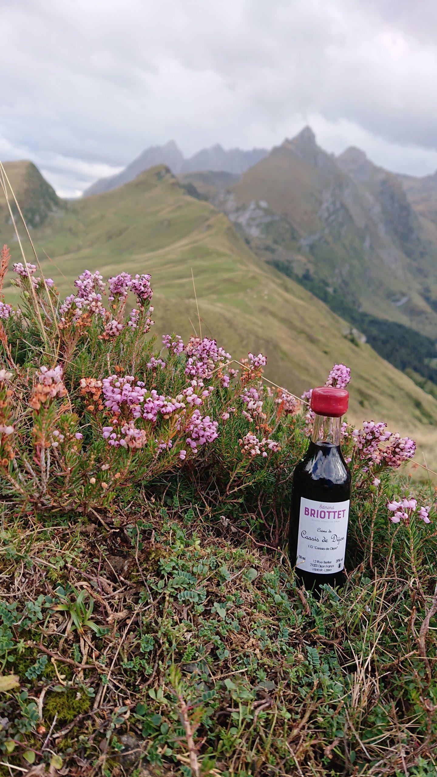 La Crème de Cassis de Dijon Briottet dans les Pyrénées